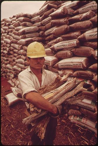 lumber yard worker.jpg